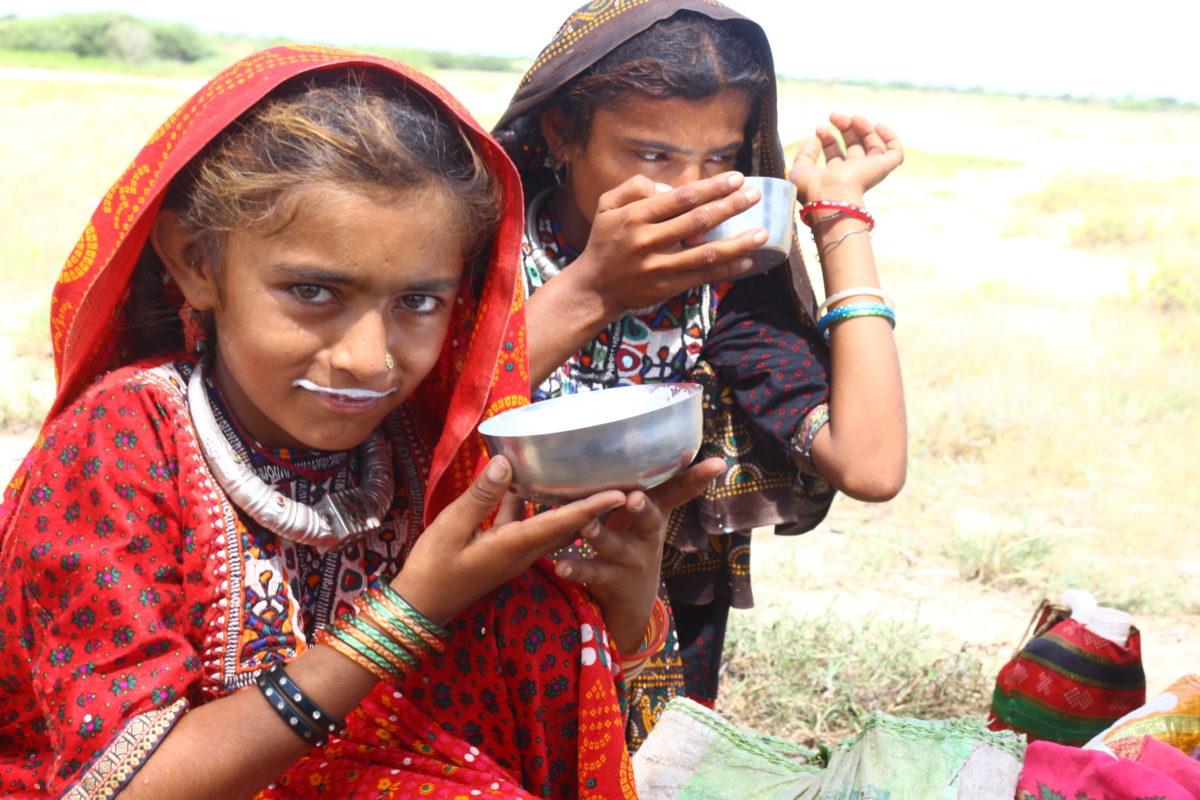 कच्छ में ऊंटनी पालने वाले एक परिवार की ये बच्चियां ताजा दूध पी रही हैं। फोटो- सहजीवन