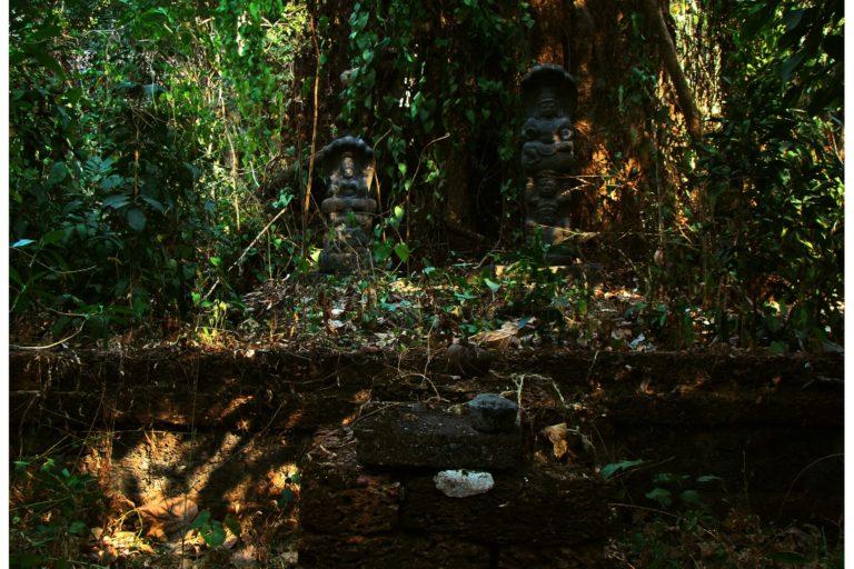 केरल के शक्तन थंपुरन में नाग देवता का स्थान। फोटो- बाविश के.बी.