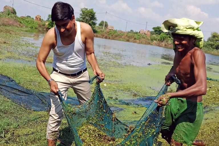 आजमपुर गांव में तालाब की सफाई करते रामवीर और उनके सहयोगी। फोटो- रामवीर तंवर