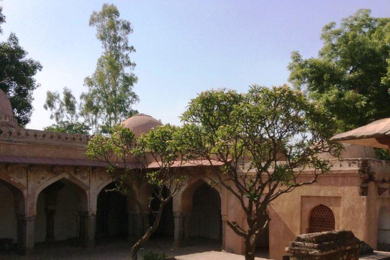 मेफेयर गार्डन स्थित मखदूम साहब मस्जिद में कई वृक्ष लगे हुए हैं। फोटो- दीपन्विता गीता नियोगी