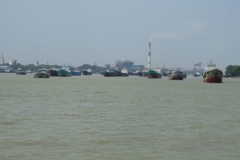 गंगा डॉल्फिन पर नदी में छोटे-बड़े जहाजों के चलने की वजह से ध्वनि प्रदूषण पैदा होता है। इससे डॉल्फिन को खतरा है। तस्वीर- मायुख डे