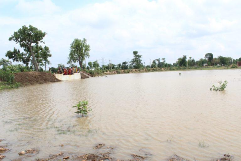 बुंदेलखंड स्थित बड़ा तालाब जो कि जिर्णोद्धार के बाद पानी से लबालब है। तस्वीर- परमार्थ समाजसेवी संस्थान