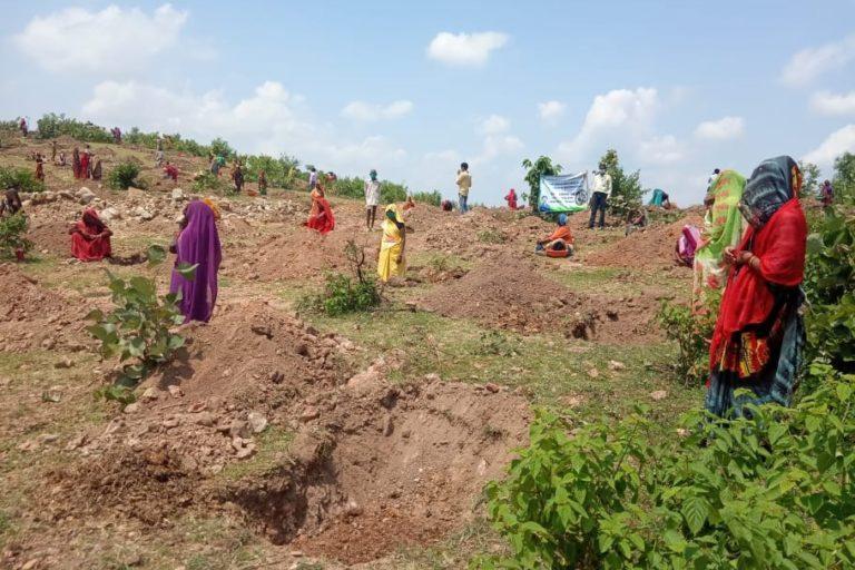महिलाओं ने महज तालाब ही नहीं संवारा बल्कि आसपास पौधरोपण कर इस जगह को हरा-भरा कर दिया। तस्वीर- परमार्थ समाजसेवी संस्थान