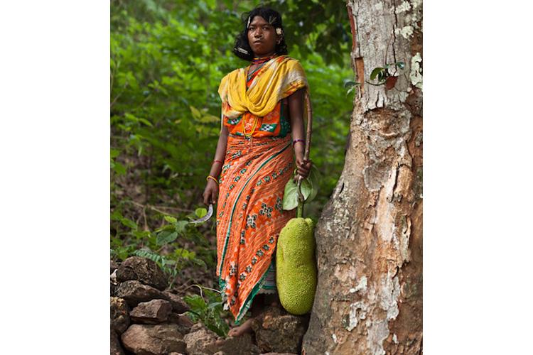 जंगल से कटहल काटकर लाती एक डोंगरिया महिला। इसे वह बाजार ले जाकर बेचेगी। तस्वीर- इंद्रजीत राजखोवा