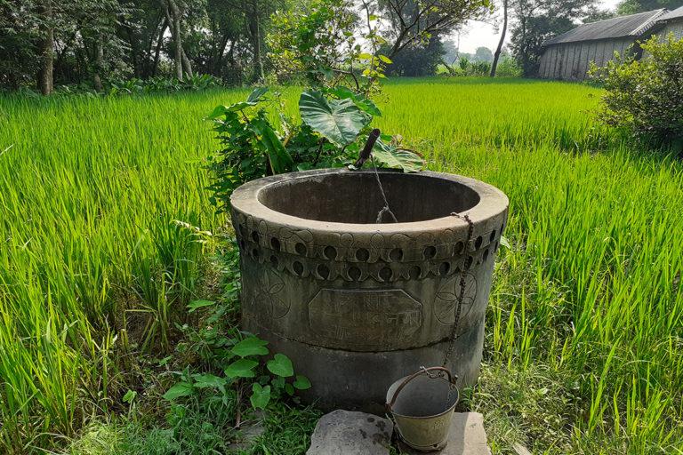 सुपौल जिले के शिबनगर गांव में खेतों के बीच बना एक छोटा सा खूबसूरत कुआं। फोटो-पुष्यमित्र