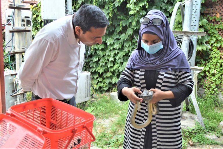 सांप से लेकर तेंदुए तक की जान बचा रही कश्मीर की आलिया