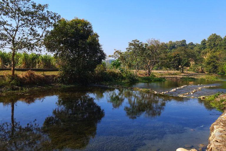 छोटी आसन नामक स्थानीय जंगली नदी सूखने की कगार पर पहुंच गई थी। इन प्रयासों के बाद नदी का जलस्तर बढ़ा। तस्वीर- वर्षा सिंह