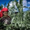घर संभालने के साथ खेतों में पुरुषों के बराबर काम करने से महिलाओं के पोषण पर नकारात्मक असर- शोध