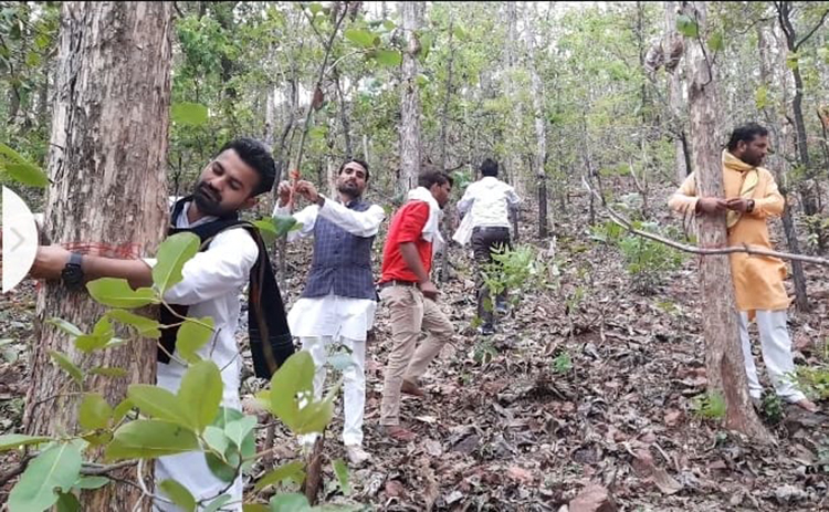 बंदर हीरा खदान की वजह से बकस्वाहा के जंगल में दो लाख से अधिक पेड़ कटेंगे। पेड़ों को बचाने के लिए सोशल मीडिया के अलावा जमीनी स्तर पर भी मुहिम चलाई जा रही है। जून में उत्तरप्रदेश के हमीरपुर से बकस्वाहा आकर युवाओं ने पेड़ों को रक्षा सूत्र बांधा। तस्वीर- विनय तिवारी