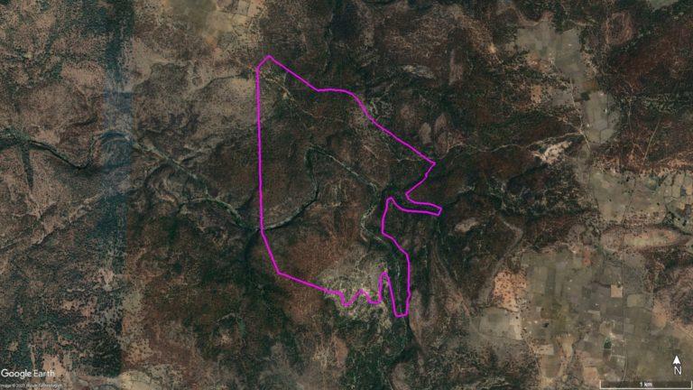 बकस्वाहा के लगभग 3000 एकड़ फैले जंगल में से 364 एकड़ जंगल पर बंदर हीरा खदान प्रस्तावित है। मानचित्र- गूगल अर्थ