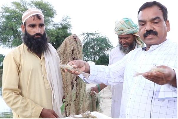 उत्तर प्रदेश में स्थानीय किसान एक दूसरे श्रिम्प-पालन के गुर सीखते हुए। तस्वीर: उत्तर प्रदेश मत्स्य विभाग