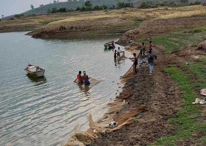 गर्मियों के दिनों में मंडला जिले के गांव खमहरीया के मछुआरे बरगी जलाशय में सामूहिक मत्स्याखेट करते हुए। बरगी नर्मदा नदी पर बना सबसे पहला बांध है जो इस नदी के सबसे महत्त्वपूर्ण बांधों में भी गिना जाता है। बरगी जलाशय न सिर्फ मछुआरों और बागवानों के रोजगार का प्रमुख स्त्रोत्र रही है, बल्कि इससे जबलपुर शहर की जलापूर्ति भी होती है। साथ ही इससे सिंचाई की परियोजनाएं भी संचालित की जा रही हैं। जबलपुर जिले में स्थित बरगी बांध वर्ष 1975 से बनना शुरू हुआ था और वर्ष 1988 में यह पूरी तरह बनकर तैयार हो गया था। तस्वीर- जितेंद्र बर्मन