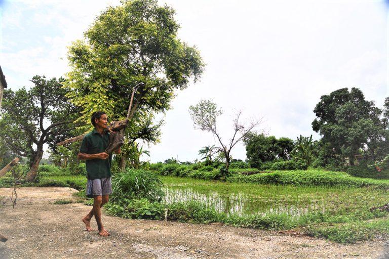 एसएमएस से मौसम की जानकारी किसानों के लिए कितनी है कारगर?