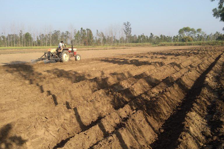 उत्तर प्रदेश में फ्लड इरिगेशन के बदले ट्रेंच विधि से खेती की शुरुआत 10 साल पहले हो गई थी। हालांकि, किसानों में तब इस पद्धति को अपनाने को लेकर हिचकिचाहट थी। तस्वीर- डब्लूडब्लूएफ-इंडिया