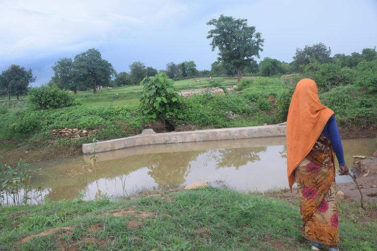 मध्य प्रदेश के पन्ना जिले में जंगल से सटे गांव के खेत। ऐसे गांव में किसान पुश्तों से खेती करते आ रहे हैं, लेकिन वनाधिकार कानून के ठीक से लागू न होने की वजह से उनके अधिकार छिनने का खतरा है। तस्वीर- मनीष चंद्र मिश्र/मोंगाबे