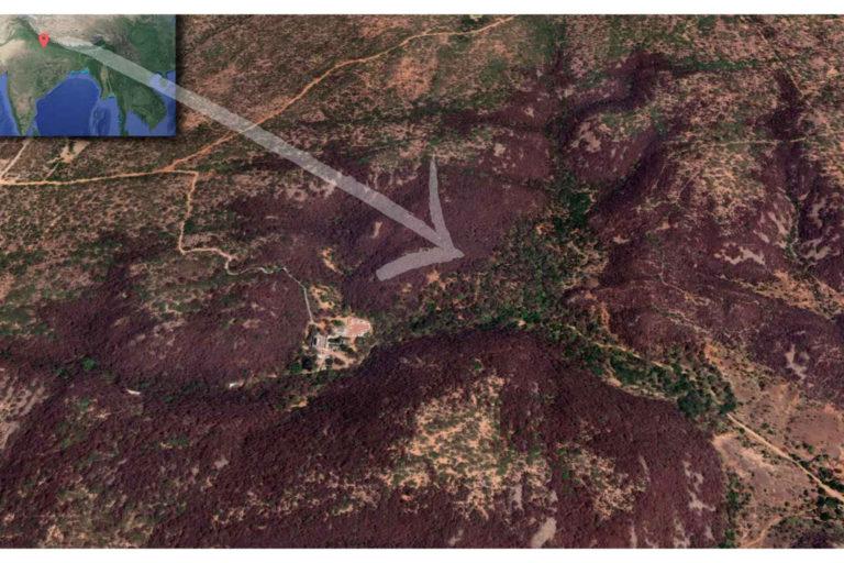नई दिल्ली के पास स्थित मांगर बानी का पवित्र वन। जंगल का यह छोटा सा इलाका स्थानीय लोगों के प्रयासों की वजह से बचा हुआ है। तस्वीर- गूगल मैप