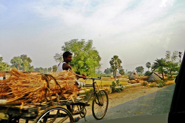 भारत सरकार के आदिवासी मामलों के मंत्रालय द्वारा जारी आंकड़ों के मुताबिक बिहार में फरवरी, 2021 तक वनाधिकार को लेकर सिर्फ 8022 दावे पेश किये गये थे, दिलचस्प है कि इनमें से बिहार सरकार ने सिर्फ 121 दावों को स्वीकृत किया है। तस्वीर- जगदरी/फ्लिकर