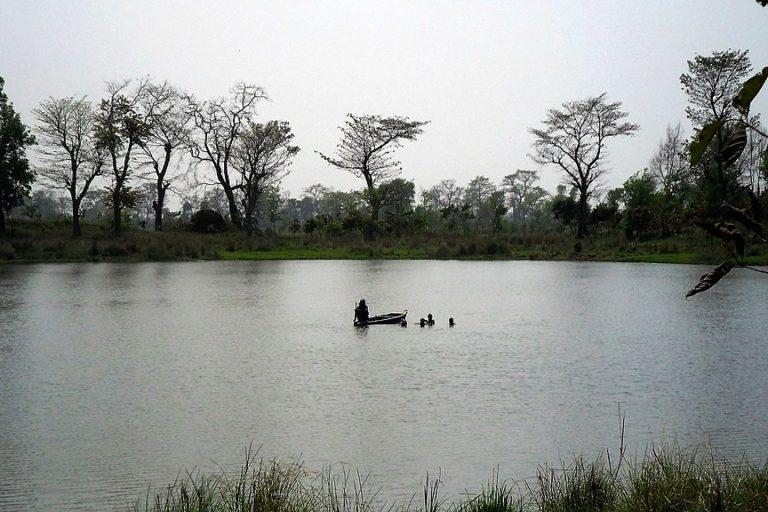 वाल्मीकि बाघ अभयारण्य में स्थित दारुआ बारी गांव में एक झील। एक शोध से पता चला है कि इस जंगल में सत्तर किस्म के वनोपज मिलते हैं। तस्वीर- प्रांशु/विकिमीडिया कॉमन्स