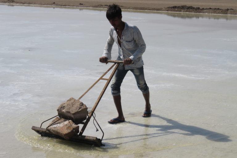 पाटा पर खारे पानी को बार-बार चलाना पड़ता है। वाष्पीकरण के बाद जमीन पर नमक के सफेद कण बच जाते हैं। ध्वनित पांड्या/एएचआरएम